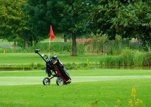 golf-caddy